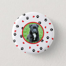 pet photo with cute sweet paw and heart pattern button