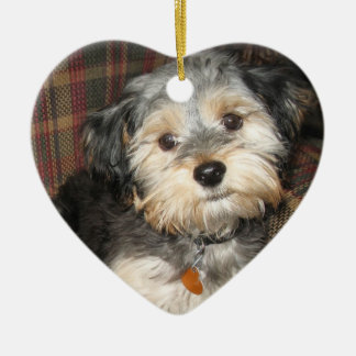 Pet Photo with Dog Bone - Double Sided Double-Sided Heart Ceramic Christmas Ornament