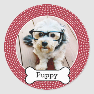 Pet Photo with Dog Bone - red polka dots Classic Round Sticker