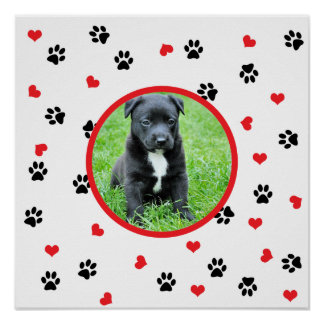 pet photo with paws and hearts pattern poster