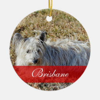 Pet PhotoOrnament with Name Double-Sided Ceramic Round Christmas Ornament