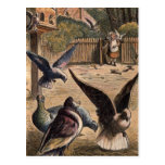Pet Pigeons Greeting Young Girl on the Farm Card Post Card