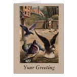 Pet Pigeons Greeting Young Girl on the Farm Cards