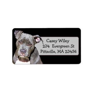 Pet Pitbull Dog Address Label