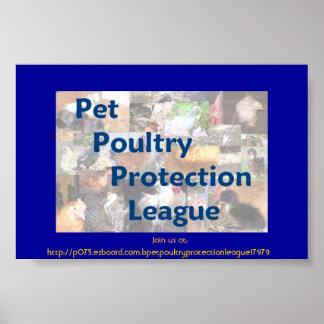 Pet Poultry Protection League Poster