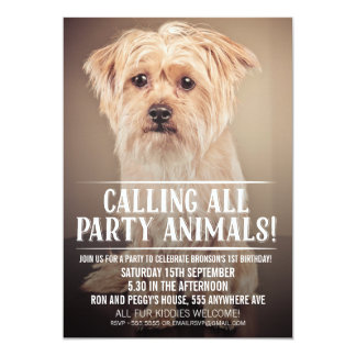 PET PUPPY DOG'S PARTY PHOTO INVITE