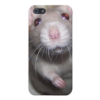 Pet Rat Baby Izzy iPhone Case