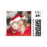 "Pet Rat ""Birch"" Postage Holiday Postage"