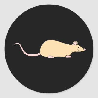 Pet Rat. Fawn. Classic Round Sticker