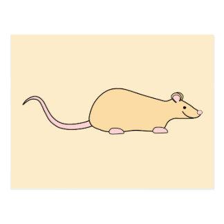 Pet Rat. Fawn. Postcard