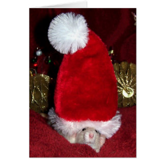 Pet Rat Holiday Greeting Card