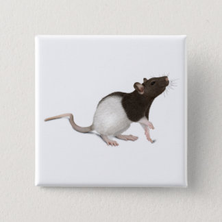 Pet Rat Painting Pinback Button