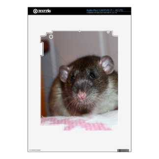 Pet Rat Skin For iPad 3