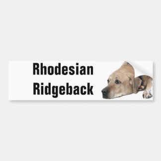 Pet Rhodesian Ridgeback Dog Picture Bumper Sticker