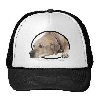 Pet Rhodesian Ridgeback Dog Picture Trucker Hats