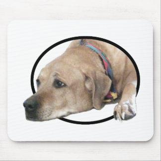 Pet Rhodesian Ridgeback Dog Picture Mouse Pad