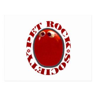 PET ROCK SOCIETY FUNNY KITSCH  1970'S POSTCARD