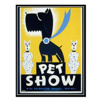 pet show postcard