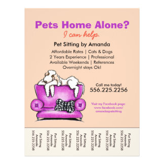 """Pet Sitter Ad White Dog Mod Couch Tear Sheet 8.5"""" X 11"""" Flyer"""