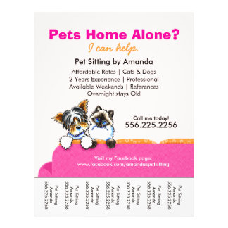 """Pet Sitter Ad Yorkie Cat Couch Pink Tear Sheet 8.5"""" X 11"""" Flyer"""