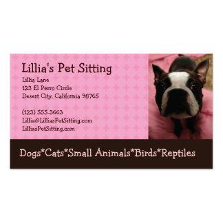 Pet Sitter Boston Terrier Business Cards