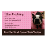 Pet Sitter Boston Terrier Business Cards