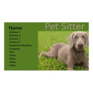 Pet Sitter Business Card