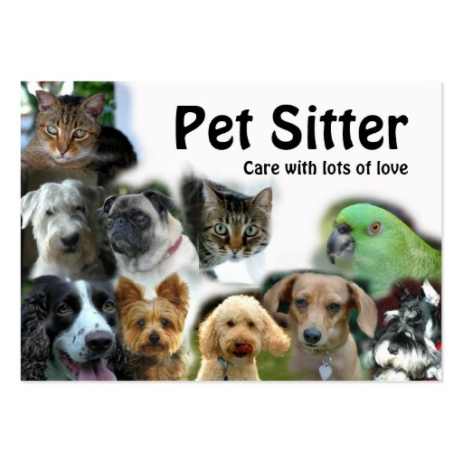 Animal pet care business card templates page21 for Babysitter dog sitter
