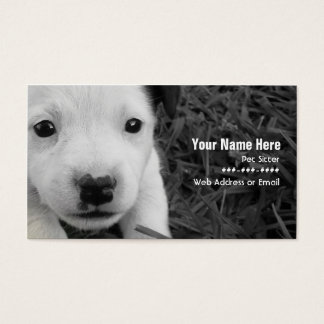 Pet Sitter Business Card - Jack Russell Puppy