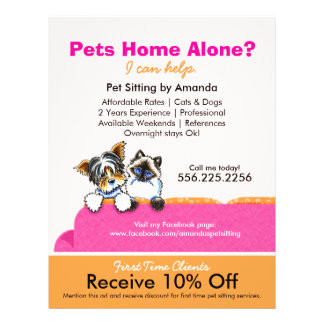 """Pet Sitter Coupon Ad Yorkie Cat Couch Pink 8.5"""" X 11"""" Flyer"""