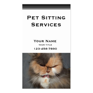 Pet Sitter - persian cat Business Card