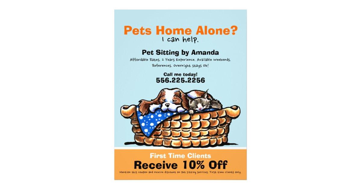 Pet Sitter Sitting Ad Coupon CKCS/kitten Flyer | Zazzle.com