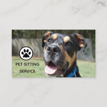 Pet Sitting and Animal Care Business Card