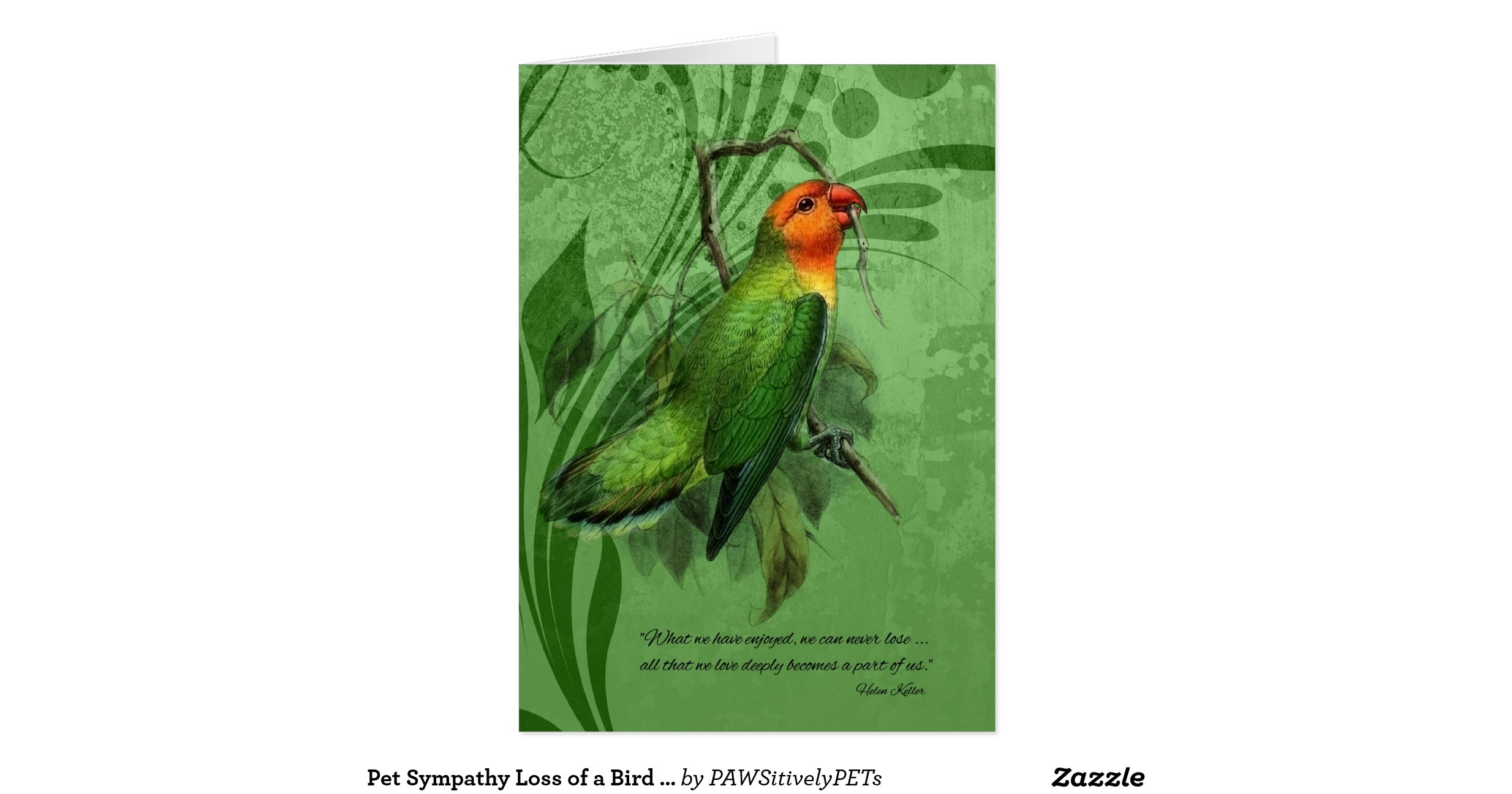 Snap With Sympathy For The Loss Of A Parrot Greeting Card Photos On