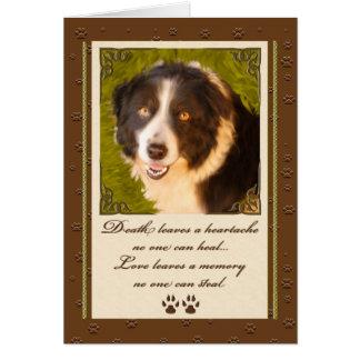 Pet Sympathy | Loss of a Dog | Border Collie Green Greeting Card