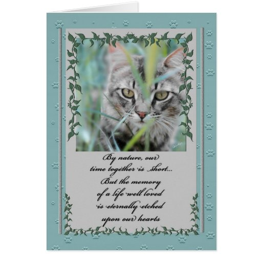 Pet Sympathy Loss of Cat Card
