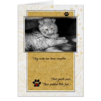 Pet Sympathy Loss of Cat - Yellow and Black Card