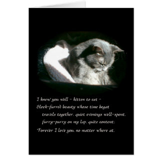 Pet Sympathy Sad Gray Kitty Cat - Cassie Card