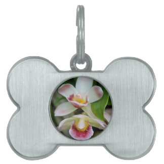 Pet Tag - Fan Shaped Orchid