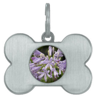 Pet Tag - Lily of the Nile