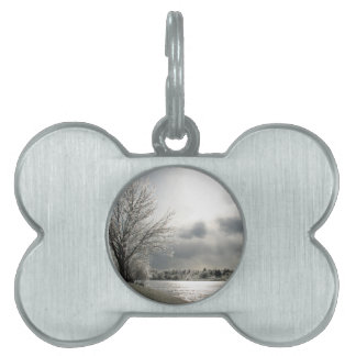 pet tag with photo of icy winter landscape