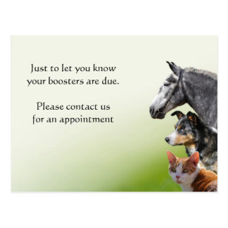 Pet vaccination booster reminder postcard