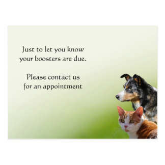 Pet vet vaccination reminder postcard