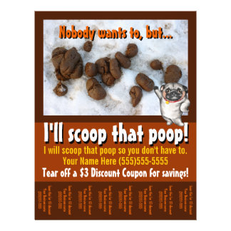 Pet Waste Removal.Pooper Scooper.Custom promo Flyer