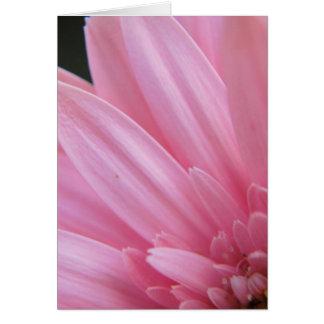 Petal Pink Greeting Card