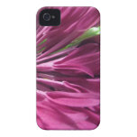 Petal Pink iPhone 4/4S Case Case-Mate iPhone 4 Cases