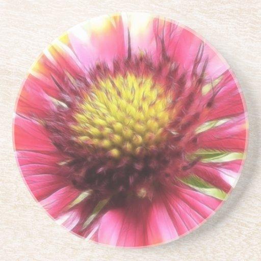 Petal Power - Gaillardia Drink Coasters