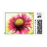 Petal Power - Gaillardia Stamps