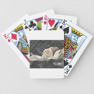 Petal Shy Poker Cards