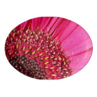 Pétalo rosado badeja de porcelana